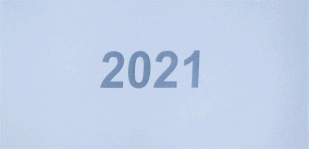 2021 1q